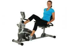 Exerpeutic 1000 High Capacity Magnetic Recumbent Bike W/ Pulse Wider Seat Extended