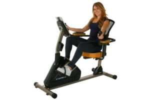 Exerpeutic 4000 Recumbent Bike