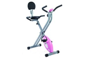 Sunny Magnetic Folding Recumbent Bike SF-RB1117