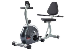 Sunny Magnetic Recumbent Bike Exercise Bike SF-RB921