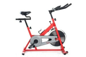 Sunny SF-B1001 Indoor Cycling Bike